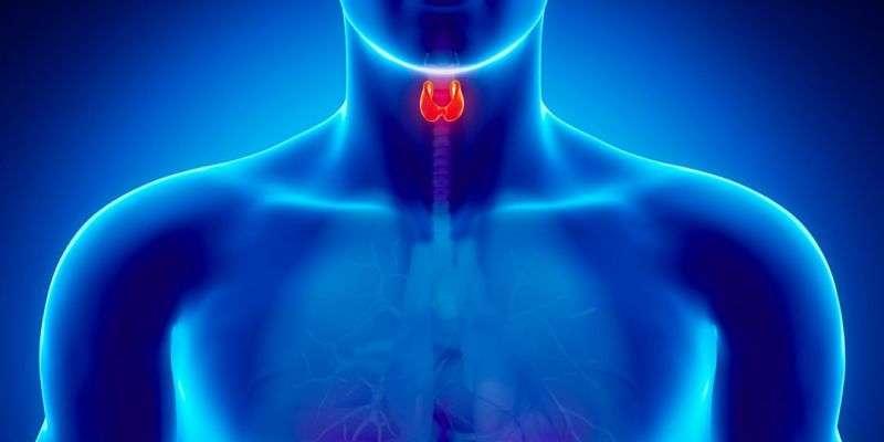 Tiroid Kanseri Çeşitleri