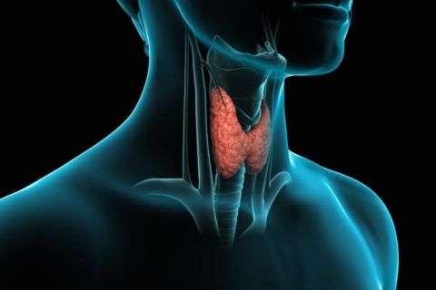 Tiroid Kanseri Nedir